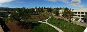 palo-alto-photo-2-thumbnail